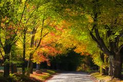 Sceniczna wiejska przejażdżka w Vermont obraz stock