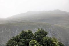 Sceniczne Clarence przejażdżki góry między Gordon ` s zatoką i Rooiels w Zachodnim przylądku, Południowa Afryka obrazy royalty free