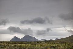 Sceniczne Clarence przejażdżki góry między Gordon ` s zatoką i Rooiels w Zachodnim przylądku, Południowa Afryka zdjęcie royalty free