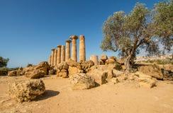 Sceniczne stare ruiny w dolinie świątynie blisko Agrigento Zdjęcie Royalty Free