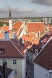 24-27 08 2016 Scenicznego lata linii horyzontu pięknych powietrznych panoram Stary miasteczko w Tallinn, Estonia Zdjęcie Royalty Free