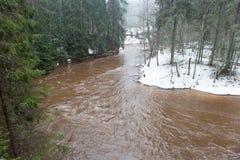 Scenicznej zimy barwiona rzeka w kraju Obrazy Royalty Free