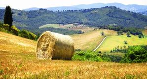 Sceniczni krajobrazy Tuscany, Włochy obraz stock