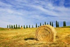 Sceniczni krajobrazy Tuscany, Włochy obrazy stock