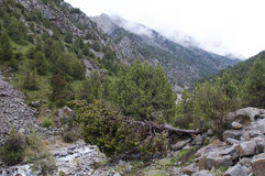 Sceniczni widoki wąwóz Dugoba w Kirgistan Fotografia Stock