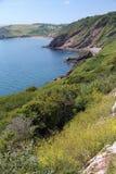 sceniczny brzegowy Devon obraz stock