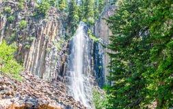 Sceniczny częstokół Spada płynący nad stromą falezą w luksusowym Montana lesie zdjęcie stock
