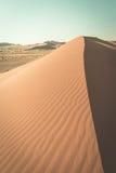 Sceniczny Deadvlei i, Namib Naukluft park narodowy, główny gościa przyciąganie i t, Zdjęcia Royalty Free