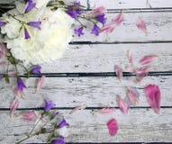 Sceniczny drewniany tło z białymi peonia kwiatu dzwonami Obrazy Stock
