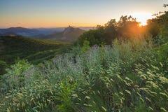 Sceniczny góra krajobraz z drzewami Obraz Stock