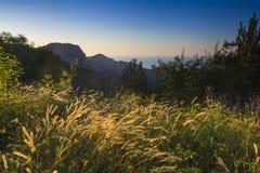 Sceniczny góra krajobraz z drzewami Obraz Royalty Free