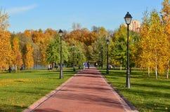 Sceniczny jesień krajobraz pięknie się tło charakteru wektora zdjęcia royalty free