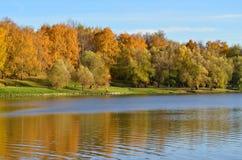Sceniczny jesień krajobraz pięknie się tło charakteru wektora obraz royalty free
