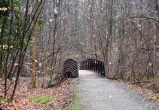 Sceniczny krajobraz nieociosany most na natura śladzie w śnieżnej burzy Zdjęcia Royalty Free