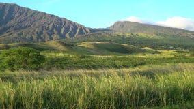 Sceniczny krajobraz w Hawaje zbiory wideo