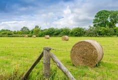 Sceniczny krajobraz z siano belami na letnim dniu Obraz Royalty Free