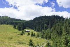 Sceniczny lato g?r widok z chmurnym niebem carpathians zdjęcie royalty free