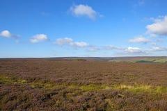 Sceniczny moorland fotografia stock