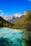 sceniczny terenu huanglong Zdjęcie Royalty Free