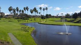 Sceniczny trawiasty krajobraz obrazy royalty free