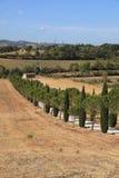 Sceniczny Tuscany krajobraz, Włochy zdjęcie royalty free