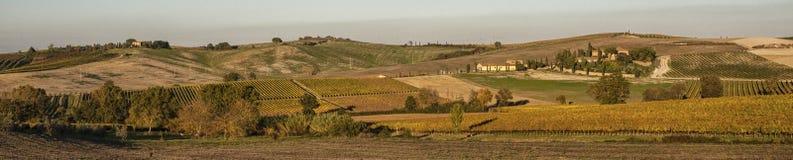 Sceniczny Tuscany krajobraz z tocznymi wzgórzami i dolinami w Val d ` Orcia, Włochy w jesieni obraz royalty free