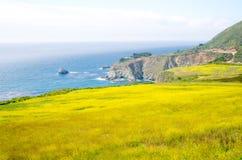Sceniczny Vista na Kalifornia stanu trasie 1 Zdjęcia Royalty Free