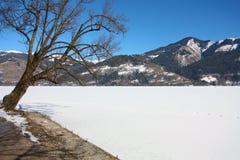 Sceniczny widok ścieżka wokoło jeziora Fotografia Royalty Free