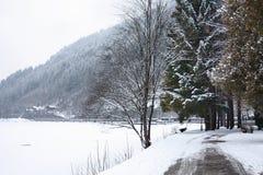 Sceniczny widok ścieżka wokoło jeziora, Zeller Widzii, Zell Fotografia Royalty Free