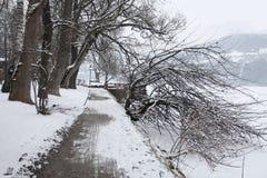 Sceniczny widok ścieżka wokoło jeziora, Zeller Widzii, Zell Zdjęcia Royalty Free