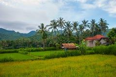 Sceniczny widok Amed zatoka w Bali z wulkan górą Agung w tle Fotografia Royalty Free