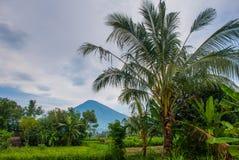 Sceniczny widok Amed zatoka w Bali z wulkan górą Agung w tle Fotografia Stock