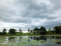 Sceniczny widok brzeg spokojny jezioro z popielatym chmurnym niebem trawa i drzewa i zakrywał wzgórza wzdłuż banka odbijającego obraz stock