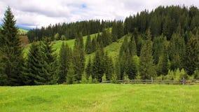 Sceniczny widok góry natura i stara wioska na wzgórzach z drewnianymi kabinami Pogodny wiosna dzień z zieloną trawą, kwitnie ja zbiory wideo