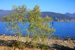 Sceniczny widok Isola dei Pescatori na Lago Maggiore, Północny Włochy, Europa Zdjęcia Royalty Free