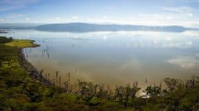 Sceniczny widok jeziorny Nakuru od widoku punktu na wzgórzu Fotografia Royalty Free