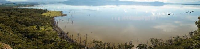 Sceniczny widok jeziorny Nakuru od widoku punktu na wzgórzu Obrazy Stock