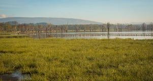 Sceniczny widok jeziorny Nakuru od widoku punktu na wzgórzu Obraz Royalty Free