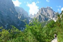 Sceniczny widok lato góry Obrazy Stock