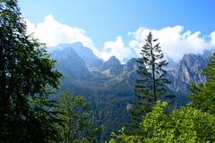 Sceniczny widok lato góry Zdjęcia Royalty Free