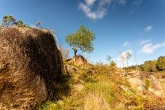 Sceniczny widok nastolatka dopatrywanie przy zmierzch g?rami, Peneda-Geres park narodowy, p??nocny Portugalia obrazy royalty free