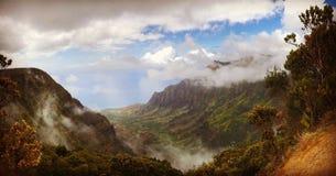 Sceniczny widok Waimea jar, Kauai Obraz Royalty Free