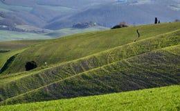 Sceniczny widok zieleni wzgórza w Toskańskiej wsi zdjęcie royalty free