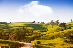 Sceniczny wiejski Australia Fotografia Stock