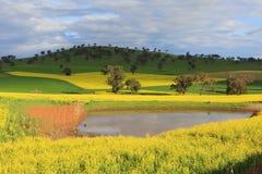 Sceniczny ziemia uprawna krajobraz Obrazy Royalty Free