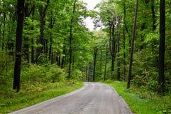 Scenisk backroad i en Pennsylvania skog Arkivfoton