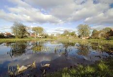 scenisk by för damm Fotografering för Bildbyråer