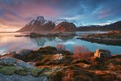 Scenisk fjord på Lofoten öar, Reine, Norge Stillhet bevattnar Berömd turist- dragning på Lofoten öar royaltyfri foto