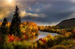scenisk flod Royaltyfria Bilder