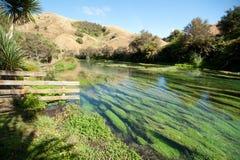 Scenisk flod Arkivfoto